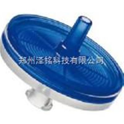 (GF)针头式滤器
