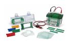 Bio-Rda Mini-PROTEAN® Tetra 電泳槽