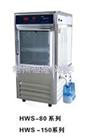 HWS-1500智能恒温恒湿培养箱厂家