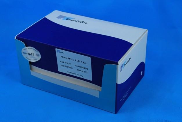 人β葡萄糖醛酸苷酶(βGD)ELISA Kit
