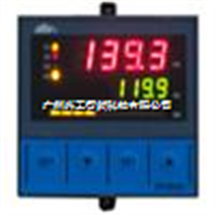 DY29B26P智能控制数显示仪DY29B26P