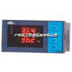 DY21E2226P双路数显控制仪DY21E2226P