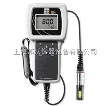 美國YSI 550A型 溶解氧測量儀