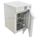 DHP-9052電熱恒溫培養箱