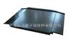 苏州1000kg电子计量磅_带USB接口