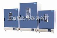 DGG-9070A立式200度电热恒温鼓风干燥箱老化箱 恒温箱 烘箱DGG系列