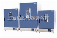 DGG-9420A立式200度电热恒温鼓风干燥箱老化箱 恒温箱 烘箱DGG系列