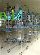 乌鲁木齐BDEX1~100L防爆双层玻璃反应釜