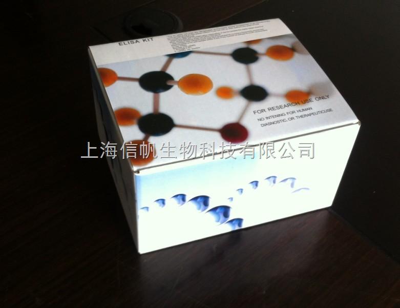 肿瘤坏死因子β(TNF-β)ELISA 试剂盒