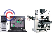 LBT-37XB-V图像倒置显微镜