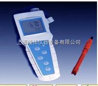 溶解氧分析仪,便携式溶解氧分析仪JPBJ-608