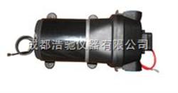 CSP24120微型水泵