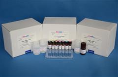 山羊白介素10(IL-10)ELISA试剂盒
