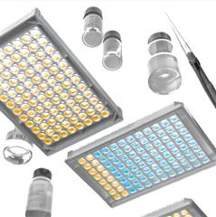 駱駝內皮素1(ET-1)ELISA試劑盒