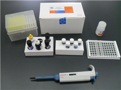 猴白介素6(IL-6)ELISA试剂盒