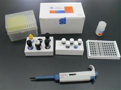 藍耳病ELISA試劑盒