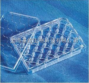 Corning   24孔细胞培养板