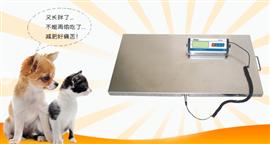 60公斤寵物電子秤