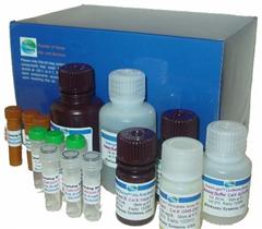 小鼠CXC趋化因子受体3酶免试剂盒,(CXCR3)ELISA检测试剂盒