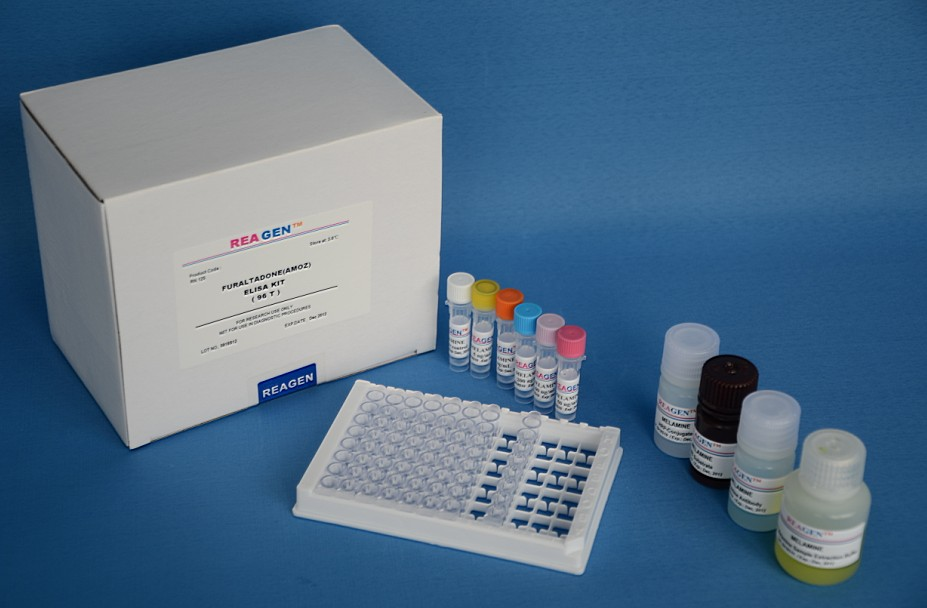 (b7-2/scd86)elisa检测试剂盒