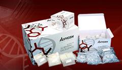 兔子骨膠原交聯酶免試劑盒,(Cr)ELISA檢測試劑盒
