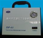 DP-01无油真空泵