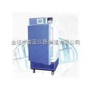 药品稳定性试验箱SFS-250Y