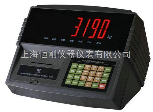 耀华XK3190-DS3m1定量称重仪表
