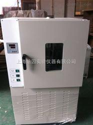 上海 DHG-100L老化试验箱的技术参数