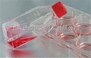 科晶細胞培養瓶,細胞培養板|瓶,細胞培養瓶廠家