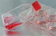 科晶细胞培养瓶,细胞培养板|瓶,细胞培养瓶厂家