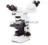 奥林巴斯CX31显微镜