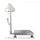 scs80公斤带打印电子秤多少钱|10g电子秤供应商