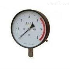 沈阳特价供应LDX-JH-YA-100氨用压力表