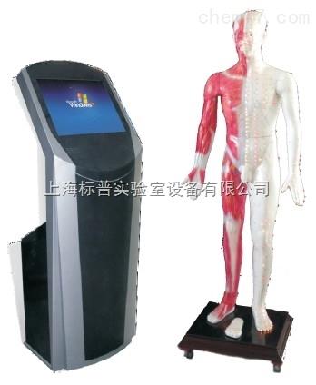 19寸多媒体人体针灸穴位交互数字平台|中医专科训练模型