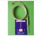 针式铂电阻WZPK-191