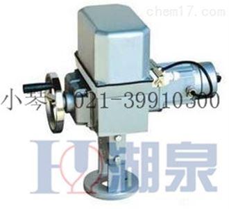 DKZ-310CDKZ直行程電執行器