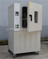 DHG-100L老化试验箱