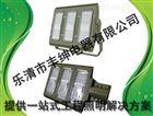 120WLED防爆泛光灯-BAX1208固态免维护防爆防腐灯