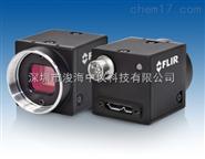 BFLY-U3-23S6M-C 工业相机