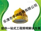 LED防爆工厂灯厂家