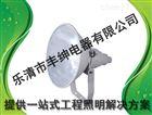 防水防尘防震投光灯 高杆专用投光灯 丰绅1000w三防投光灯