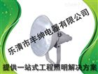 400W防震型投光灯 丰绅 高杆专用三防投光灯