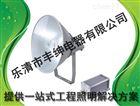 NTC9200-1000w 丰绅 防震投光灯