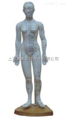 人体针灸模型女性48CM(PVC材质)