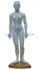 ZK-XC504A/B/C人体针灸模型女性48CM(PVC材质)