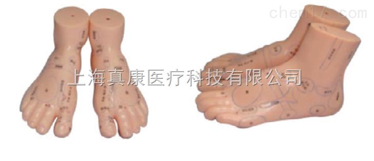 足部保健反射区模型(PVC材质)