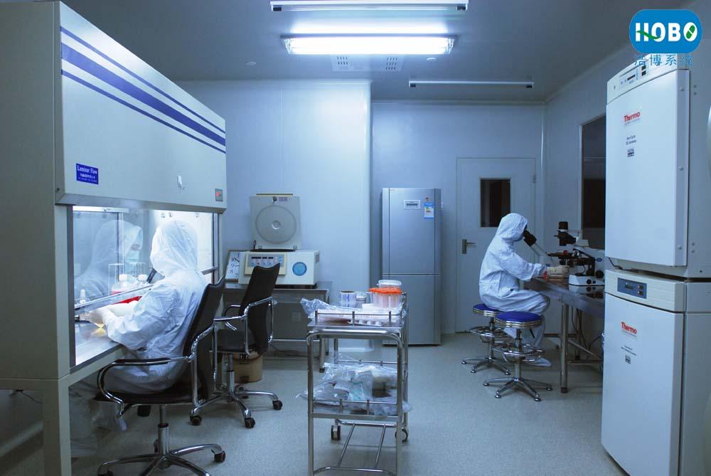 hobo-医疗器械净化实验室设计装修