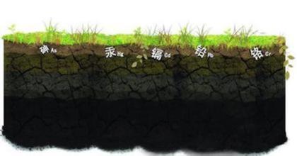 金索坤公司动态,土壤,重金属