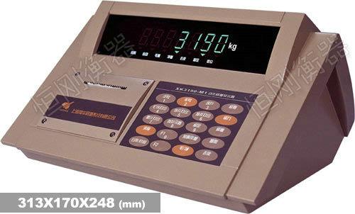 XK3190—DM1 m型锌合机壳